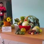 6. Выставка урожая
